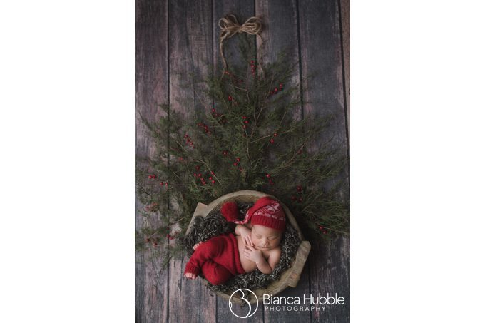 Royston GA Newborn Photographer