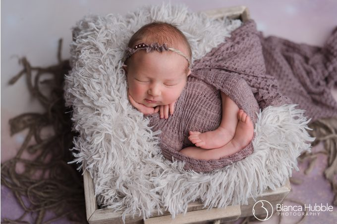 Westminster SC Newborn Photographer