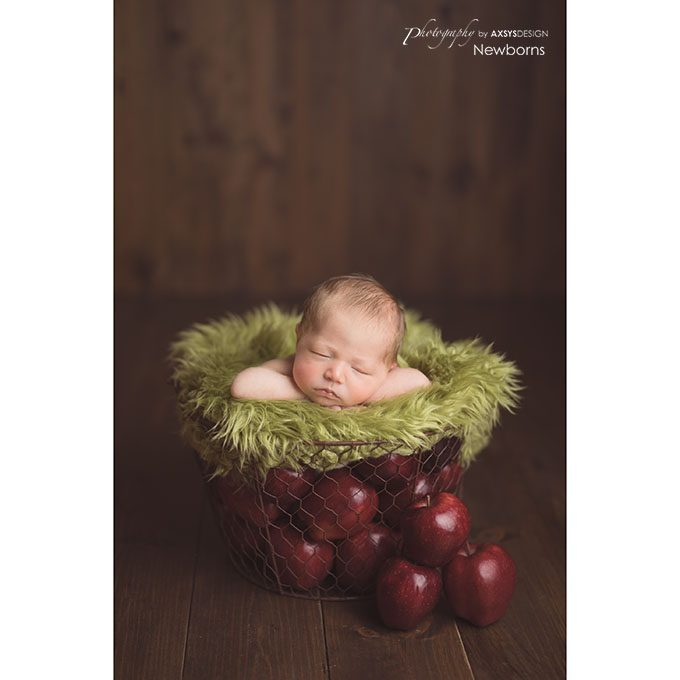Mount Airy GA Newborn Photographer