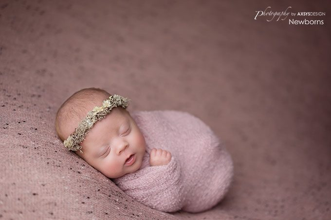 Anderson SC Newborn Photographer