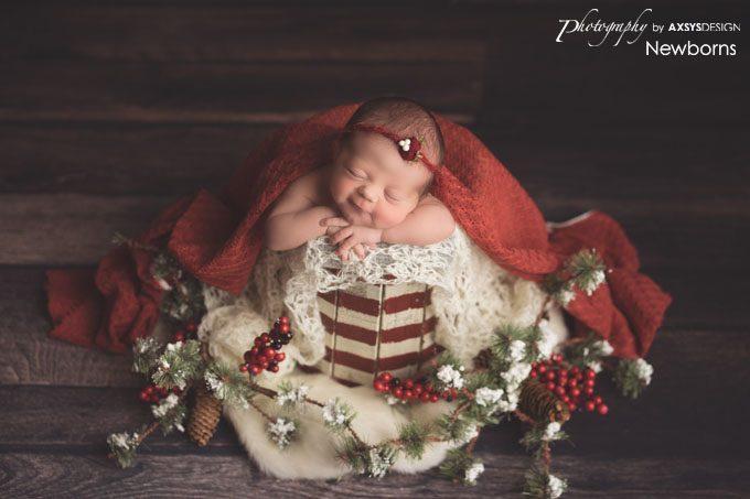 Seneca SC Newborn Photographer